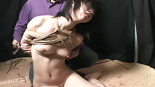 asian bdsm domination natural tits rope shaved pussy small tits