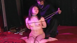 asian bdsm domination maledom panties rope shaved pussy