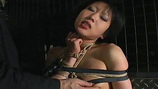 asian ass bdsm domination natural tits rope spanking