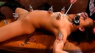 asian babes bdsm electrostimulation perfect body trimmed pussy