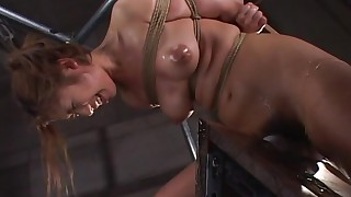 asian bdsm bondage brunette domination maledom natural tits perfect body rope torture