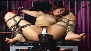 asian babes bdsm bondage fucking machine hairy rope